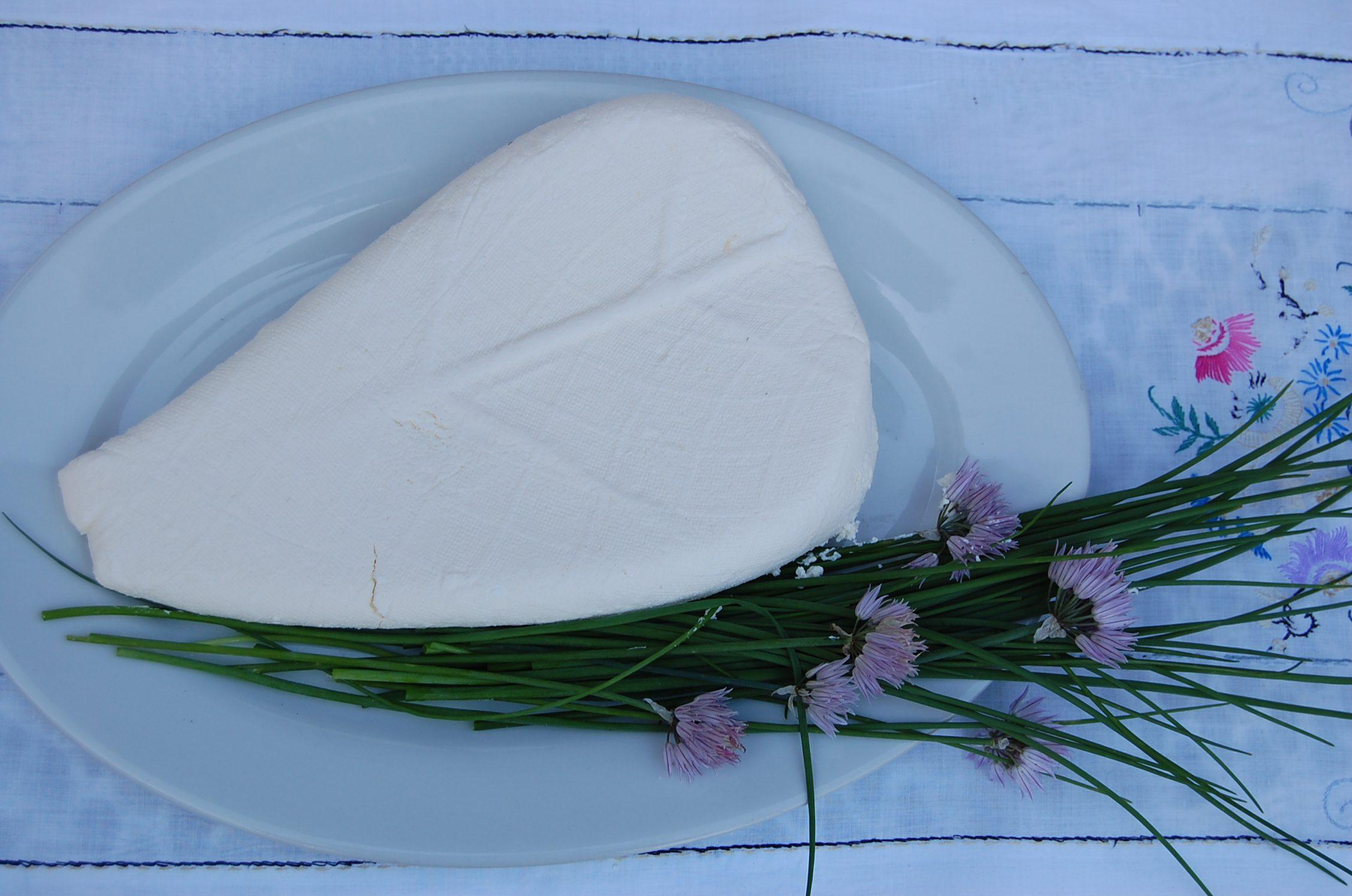 Ekologiczna żywność swojski ser biały