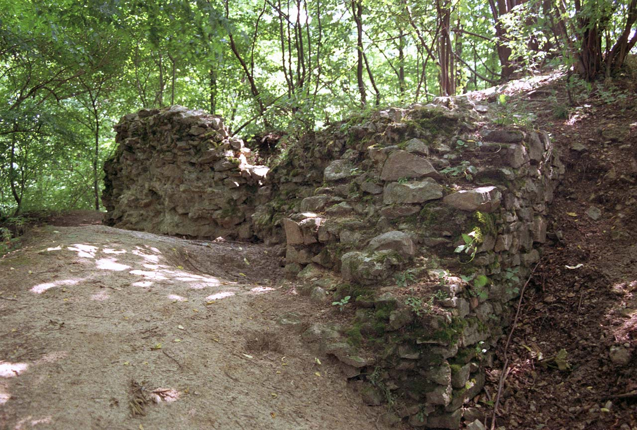 Ruiny zameku w Rembowie