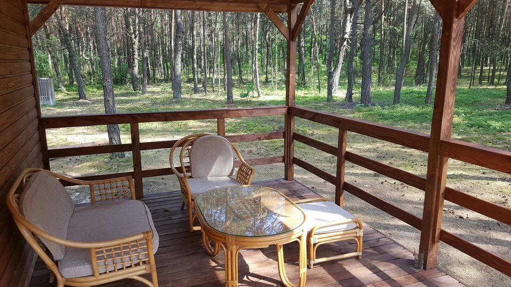 Przestronny taras w świętokrzyskim domku letniskowym w środku lasu