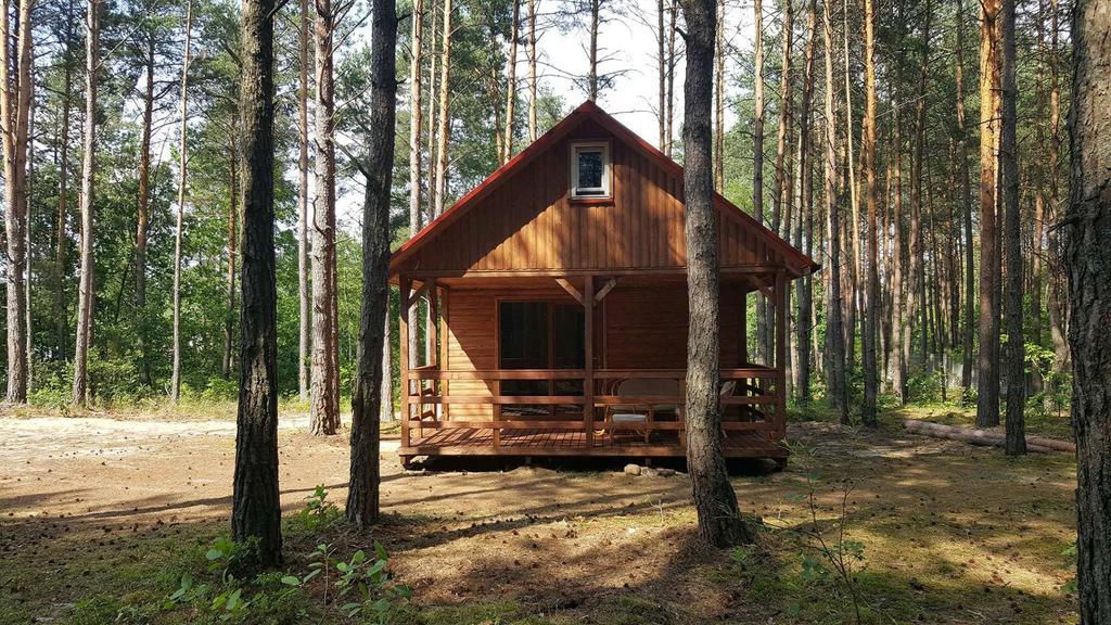 Drewniany domek letniskowy w otoczone spokojnym cichym lesie